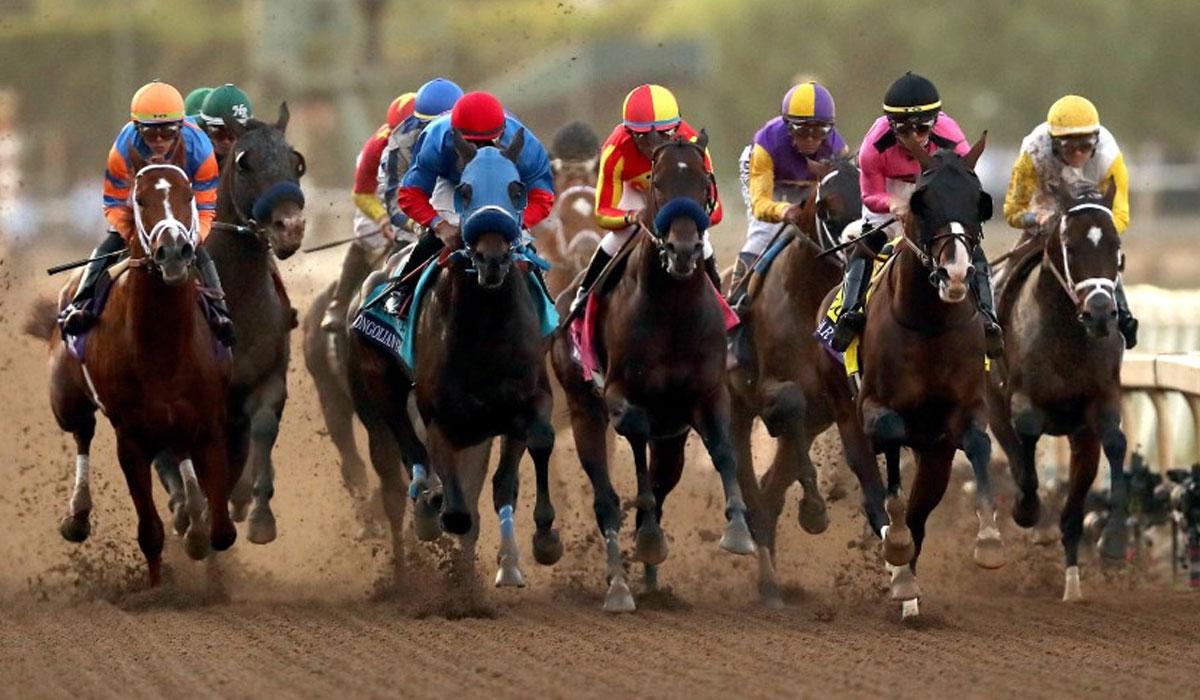 اصطلاح: مسابقه اسب دوانی
